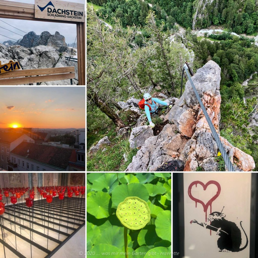 Collage des Sommeruralubs daaim in Österreich im August 2020